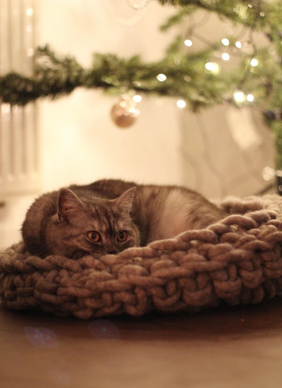 Het perfecte mandje deze winter voor Mia