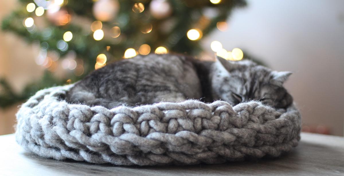 kattenmand van schaapswol